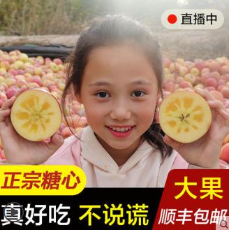 新疆阿克苏冰糖心苹果新鲜当季水果整箱10斤丑红富士大果顺丰包邮