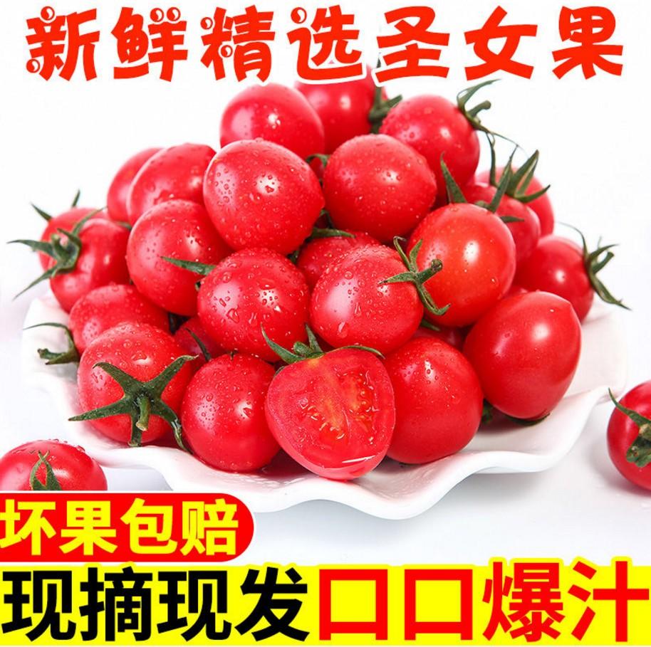 圣女果千禧小番茄新鲜西红柿千禧长果5斤农家时令蔬菜包邮水果