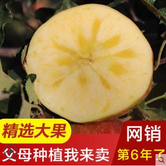 【超大果王】新疆阿克苏冰糖心苹果新鲜10斤特级礼盒装丑苹果水果