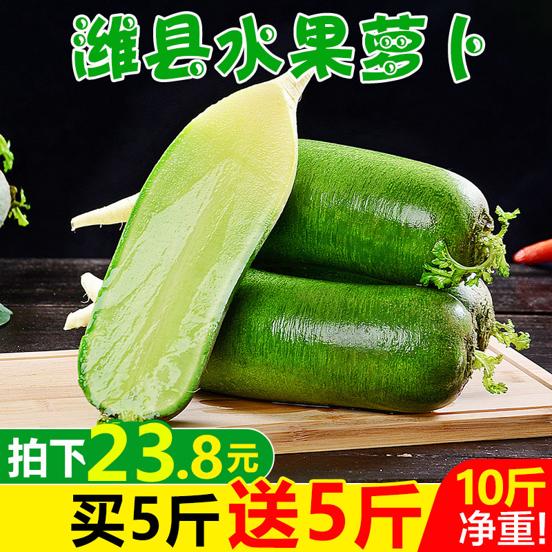 淘宝助农山东维坊水果萝卜甜脆水果型潍坊10斤新鲜沙窝青萝卜生吃